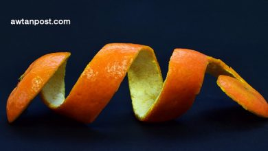 Photo of فوائد تناول قشر البرتقال .. وكيفية تجفيفه في المنزل بخطوات سهلة وبسيطة