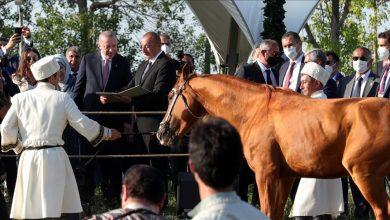 """Photo of الرئيس الأذربيجاني إلهام علييف"""" يهدي أردوغان حصانا أصيلا"""