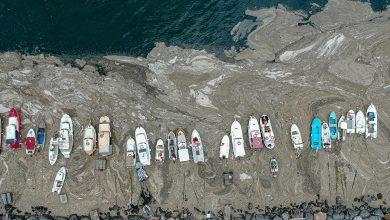 Photo of تركيا مستمرة بالحملة الواسعة لتنظيف مياه بحر مرمرة من لعاب البحر