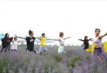 "Photo of ضمن فعاليات ""أيام حقول اللافندر"" .. نساء يمارسن اليوغا في الحقول الأرجوانية بولاية أدرنة"