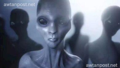 """Photo of بالفيديو .. مقطع تشريح """"كائن فضائي"""" يُعرض للبيع بمبلغ خيالي"""